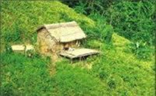 A small hut in the garden