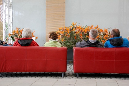 Visitors busy in conversation
